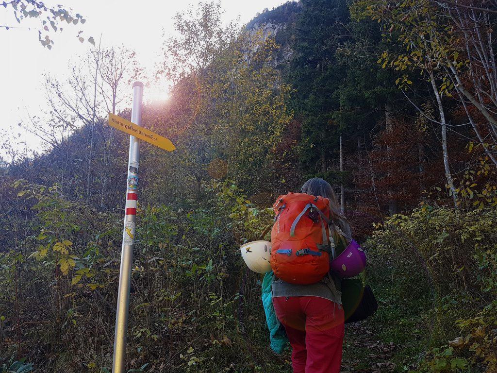 Einstieg zum Klettergarten Bärenkopf am Achensee