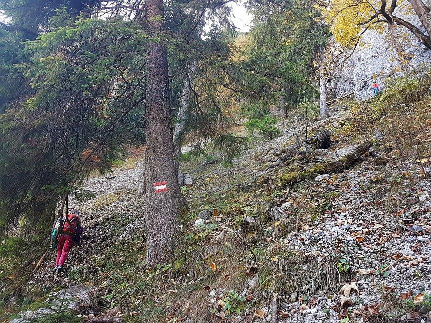 Zustieg zum Klettergarten