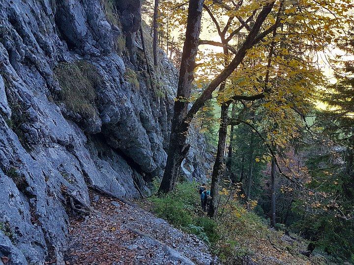 Unterer Sektor Klettergarten Bärenkopf am Achensee