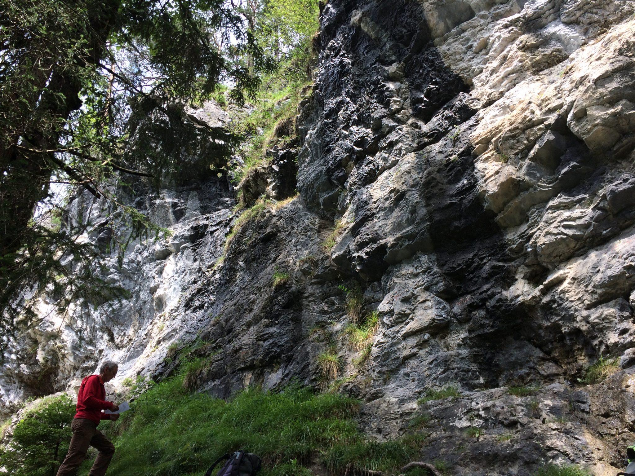 Das Griesner Wandl | Climbers Paradise