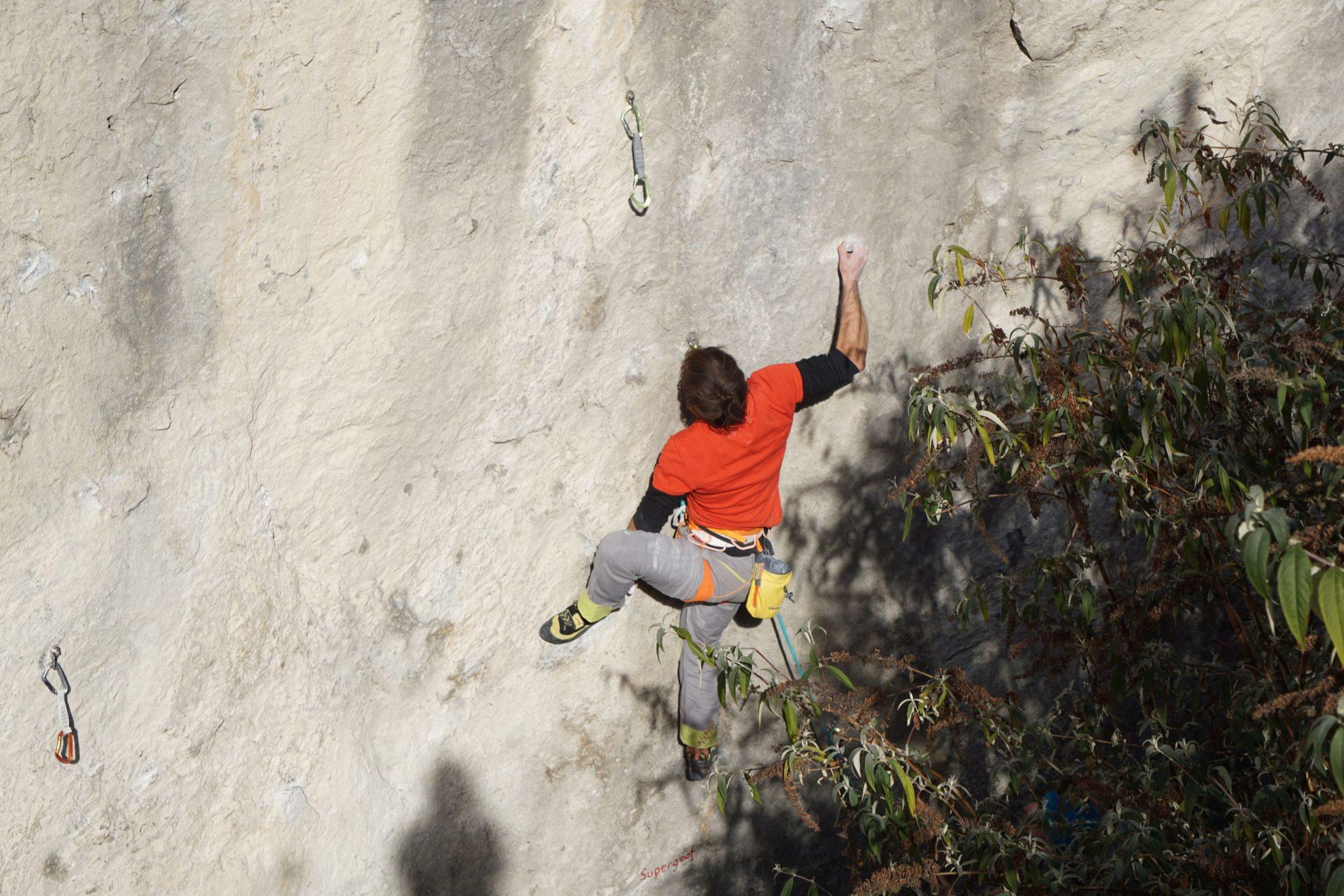 Klettergarten Dschungelbuch | Climbers Paradise