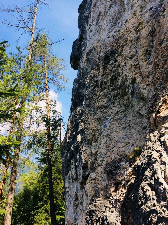 Die Felsstruktur der Felsschuppe im Klettergarten Klobental | Climbers Paradise