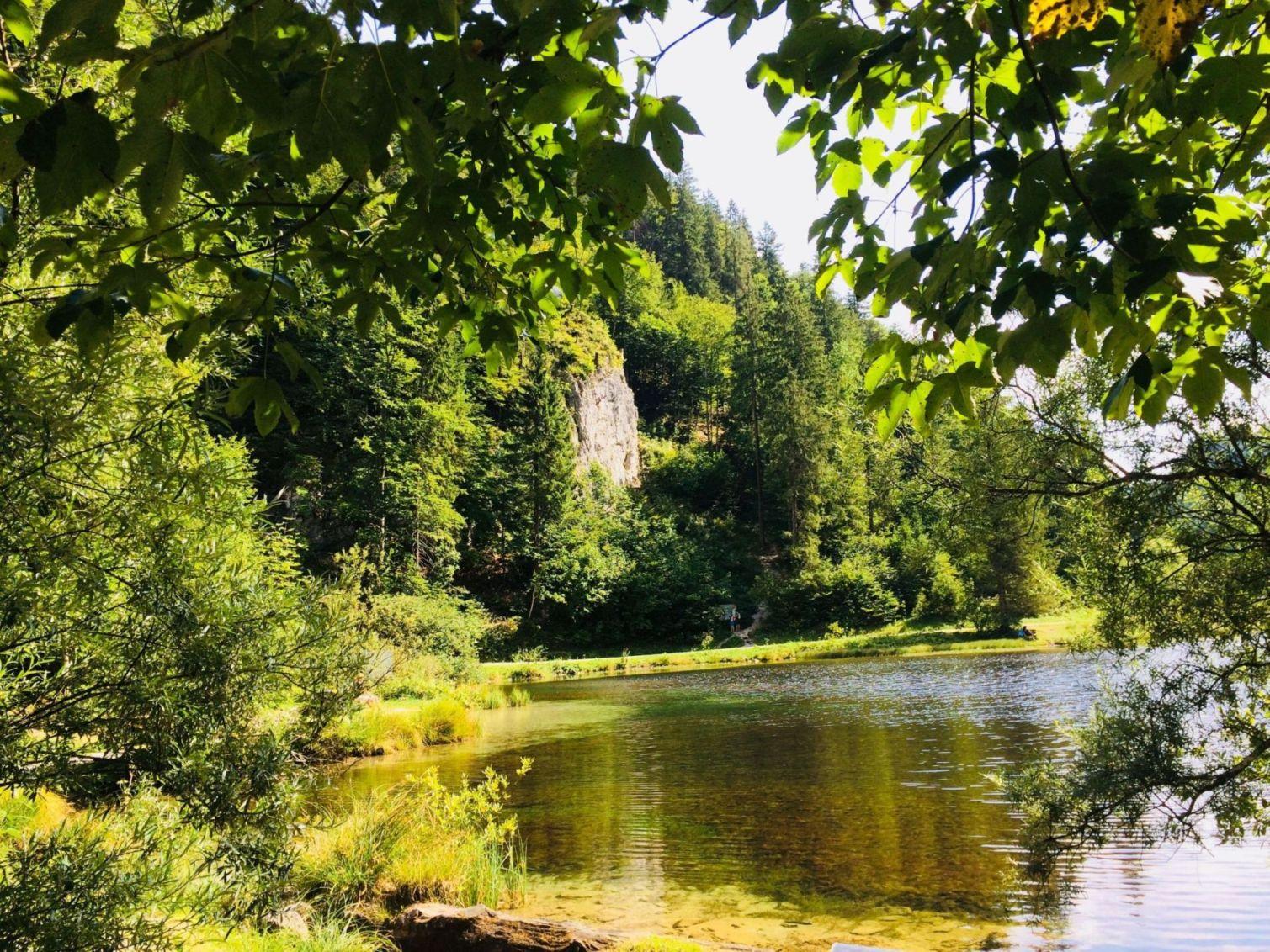 Idylle pur: Der Wiesensee von der Holzbrücke aus | Climbers Paradise