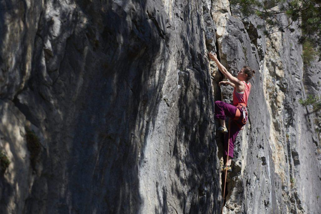 Klettern im Klettergarten Starkenbach, Foto: Michael Meisl | Climbers Paradise