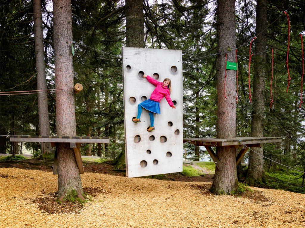 Klettern im Niederseilgarten bei Timoks Alm, Foto: Toni Niederwieser | Climbers Paradise