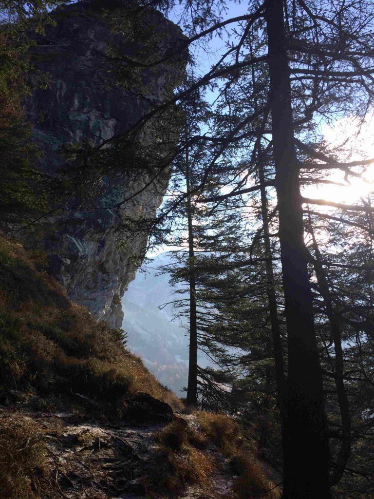 Der kleine Falkenstein im Klettergarten | Climbers Paradise