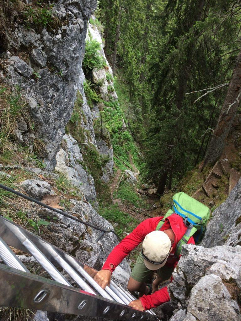 Der Zustieg zum Klettergarten Dolomitenhütte | Climbers Paradise