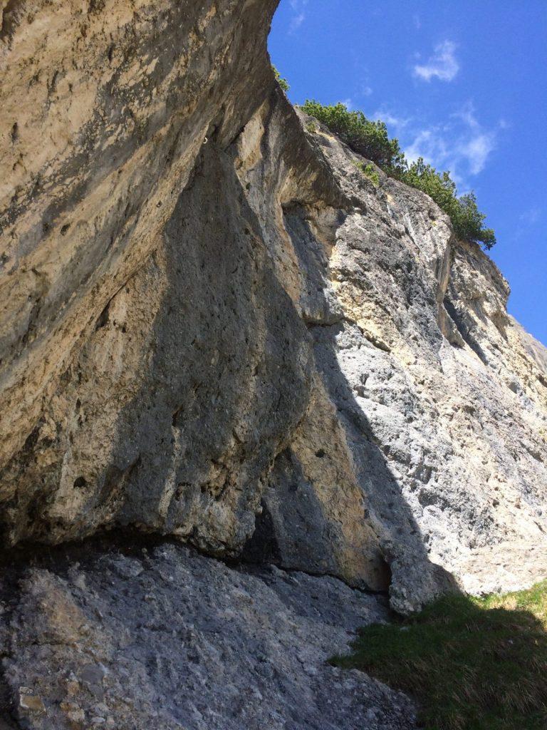 Fels für Anfänger und Könner beim Klettergarten Muttekopfhütte | Climbers Paradise