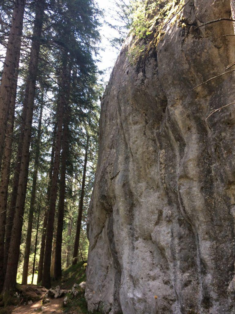 Imst - Kletterfelsen Reithle, Foto: Susa Scheiner | Climbers Paradise