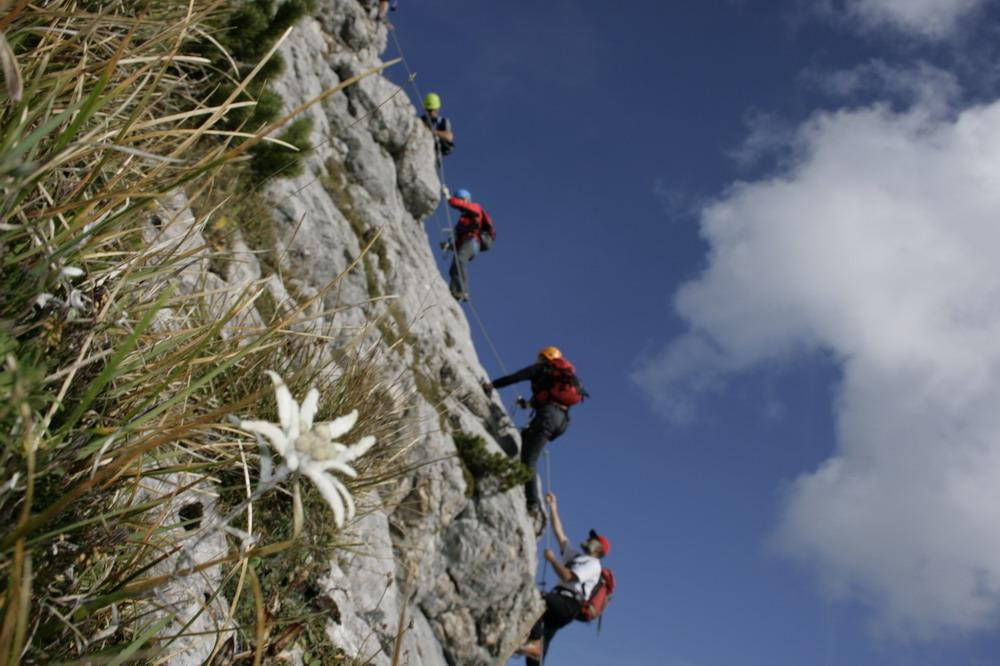 Klettersteig Achensee : Fünf gipfel klettersteig am achensee alpenverein südtirol
